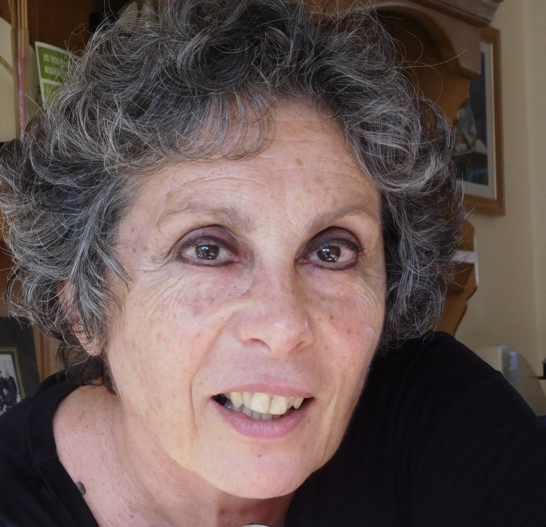 Author - Paula  Nicolson