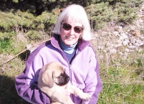 Author - Cathie Eileen West