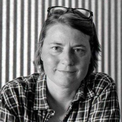 Carol L. Stimmel Author of Evaluating Organization Development