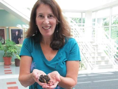 Rhonda  Sherman Author of Evaluating Organization Development