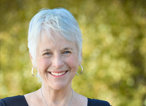 Sharon Ann Stanley Author of Evaluating Organization Development