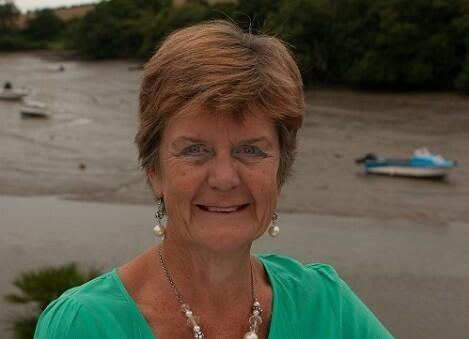 Author - Alison  Theaker