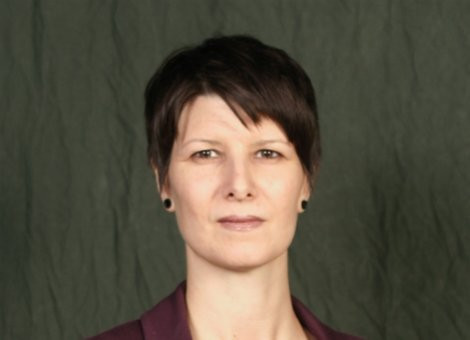 Elizabeth  Cherry Author of Evaluating Organization Development