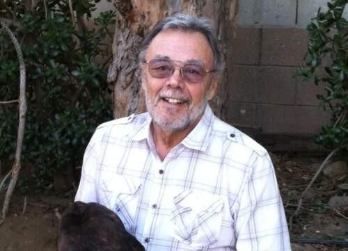 Author - Ray  DiZazzo