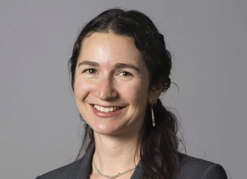 Author - Mneesha  Gellman