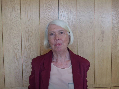 Louise  Fitzgerald Author of Evaluating Organization Development