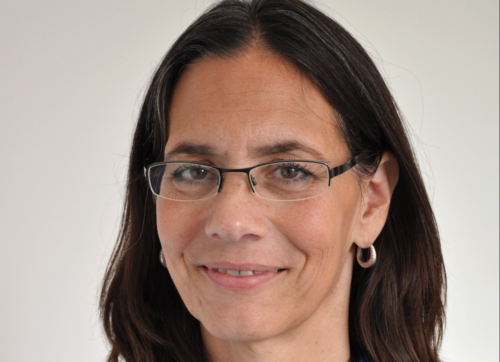 Lisa Marie Van Well Author of Evaluating Organization Development