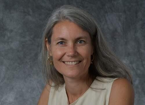 Michele D Ribeiro Author of Evaluating Organization Development