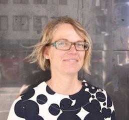 Stephanie  Springgay Author of Evaluating Organization Development