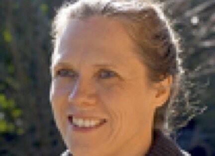 Author - Carola  Hein