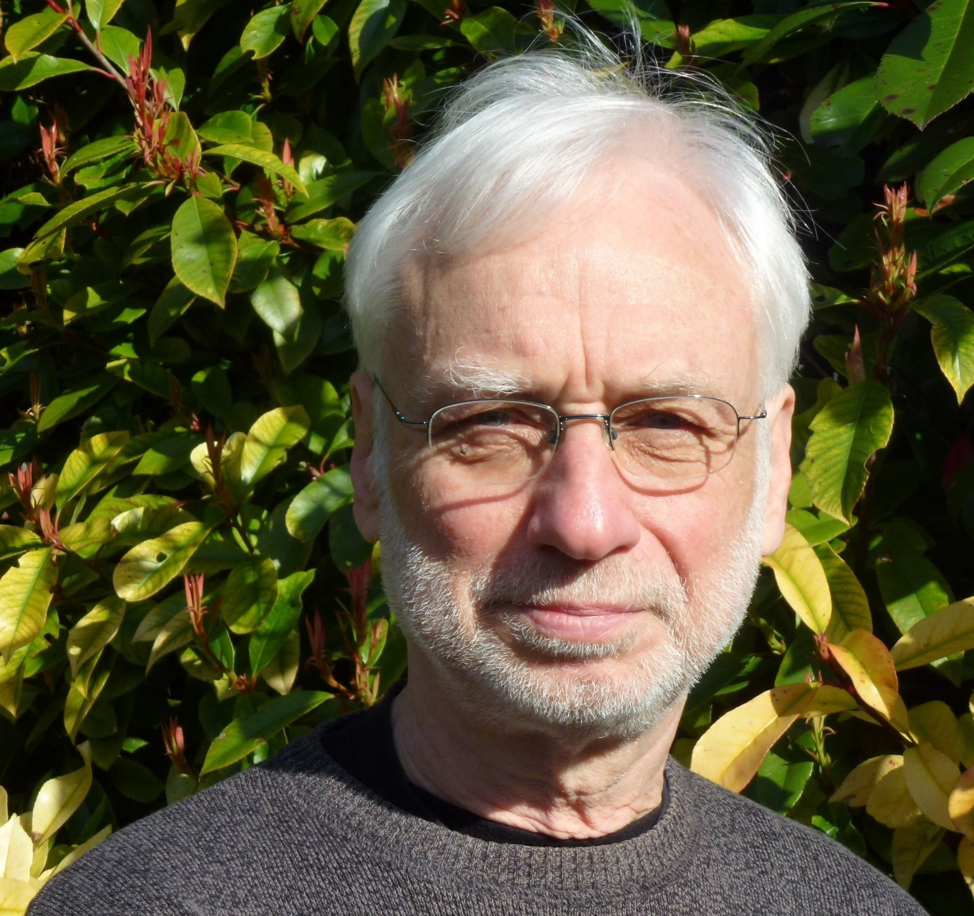 Author - Peter  Loxley