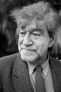 Author - Luigi  Zoja