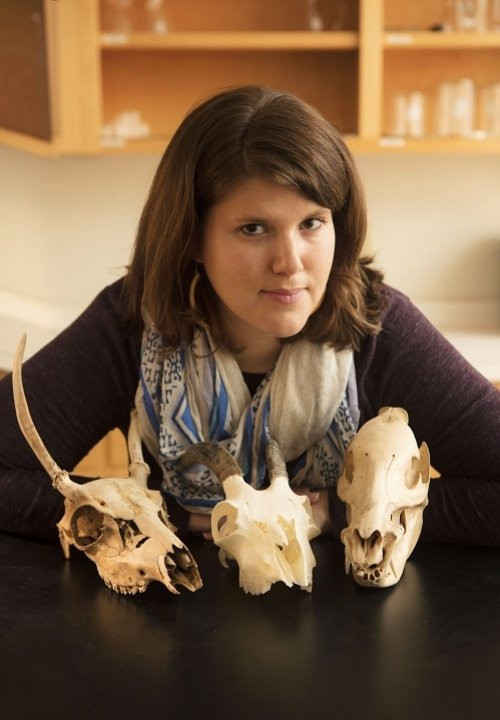 Author - Suzanne E Pilaar Birch