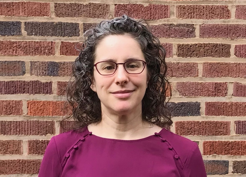 Emily Esther Rook-Koepsel Author of Evaluating Organization Development