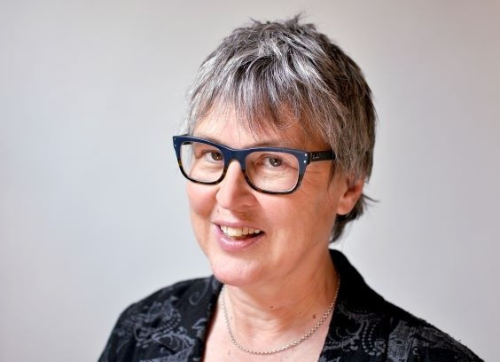 Angela  Roothaan Author of Evaluating Organization Development