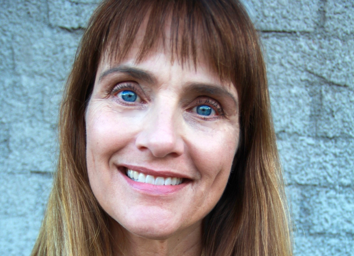Leslie  Ellis Author of Evaluating Organization Development