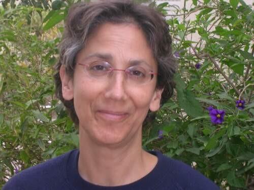 Author - Kim  Treiger-Bar-Am