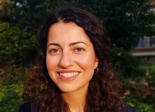 Lila  Kazemian Author of Evaluating Organization Development