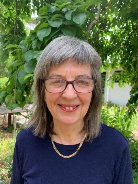 Sally  Gillespie Author of Evaluating Organization Development