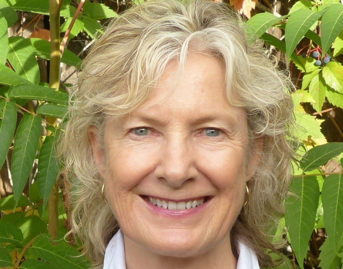 Author - Joan  Armon