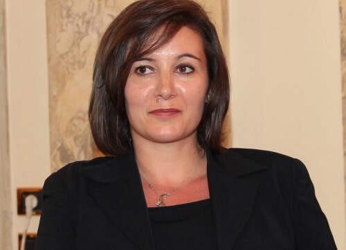 Chiara  Oldani Author of Evaluating Organization Development