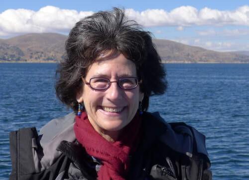 Author - Linda  Seligmann