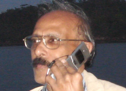Author - Dornadula  Chandrasekharam