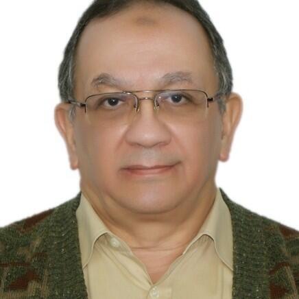 Magdi S.  Mahmoud Author of Evaluating Organization Development