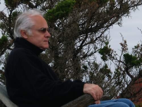 Author - Michael  Newman