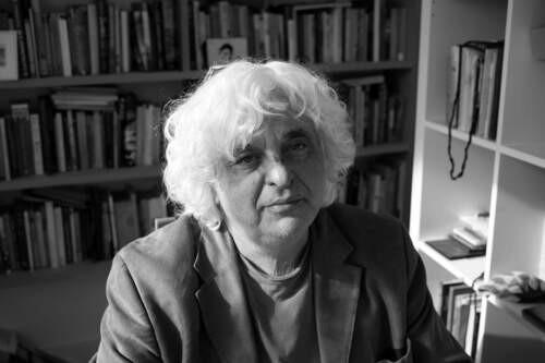 Author - david  cohen