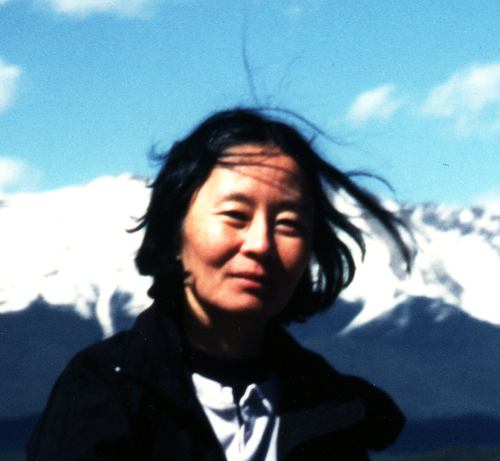 Sunny Y Auyang Author of Evaluating Organization Development