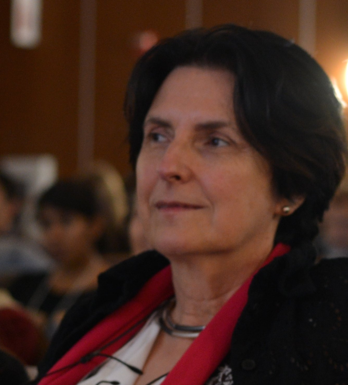 Author - Mireille  Hildebrandt
