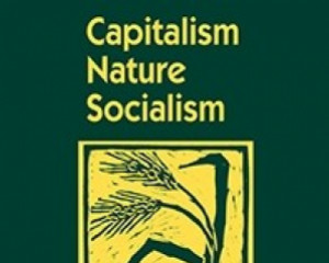 Capitalism Nature Socialism 25(3), 111–116