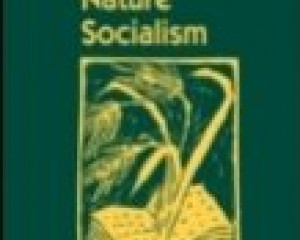 Capitalism Nature Socialism 24 (3): 254-257