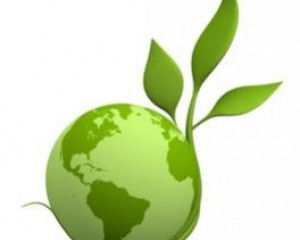 Journal of Management and Sustainability