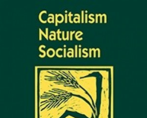 Capitalism Nature Socialism 27 (4): 40–60.
