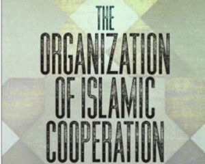 The Organization of Islamic Cooperation and Human Rights. University of Pennsylvania Press