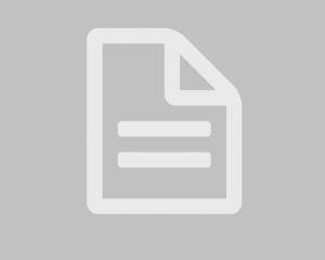 International Journal of Procurement Management