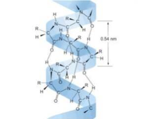 Advances in Quantum Chemistry 2020; vol. 82