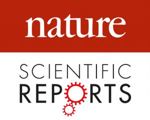 Scientific Reports, 2020, 10(11531).