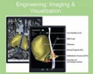 Computer Methods in Biomechanics and Biomedical Engineering: Imaging & Visualization