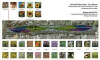 Aerial view, Bath Slough pollinator pasture (2015-2017)