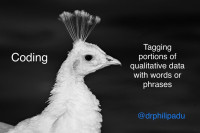 Qualitative coding