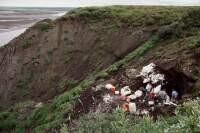 Excavating a dinosaur quarry in Arctic Alaska