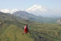 Exploring for dinosaurs in Denali National Park, Alaska Range