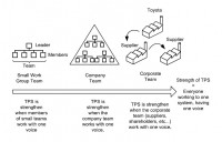 Representation of the types of teams at Toyota (extended from Besser's concept of teamwork