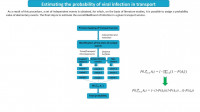 Estimating the probability of viral infection in transport
